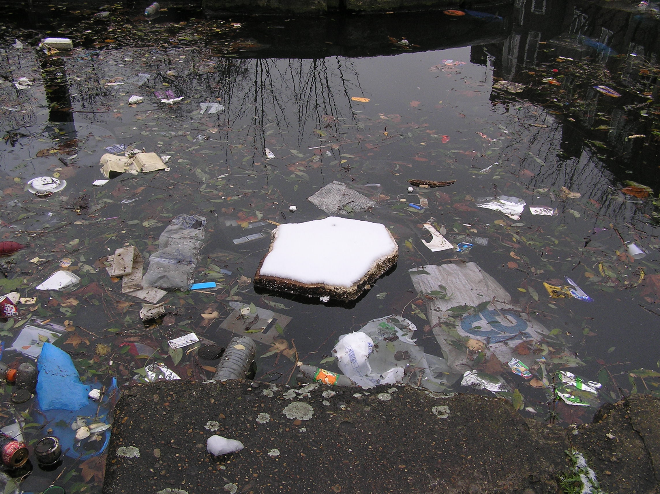 Photograph of white snowy polystyrene floating on filthy littered water by Abi Spendlove